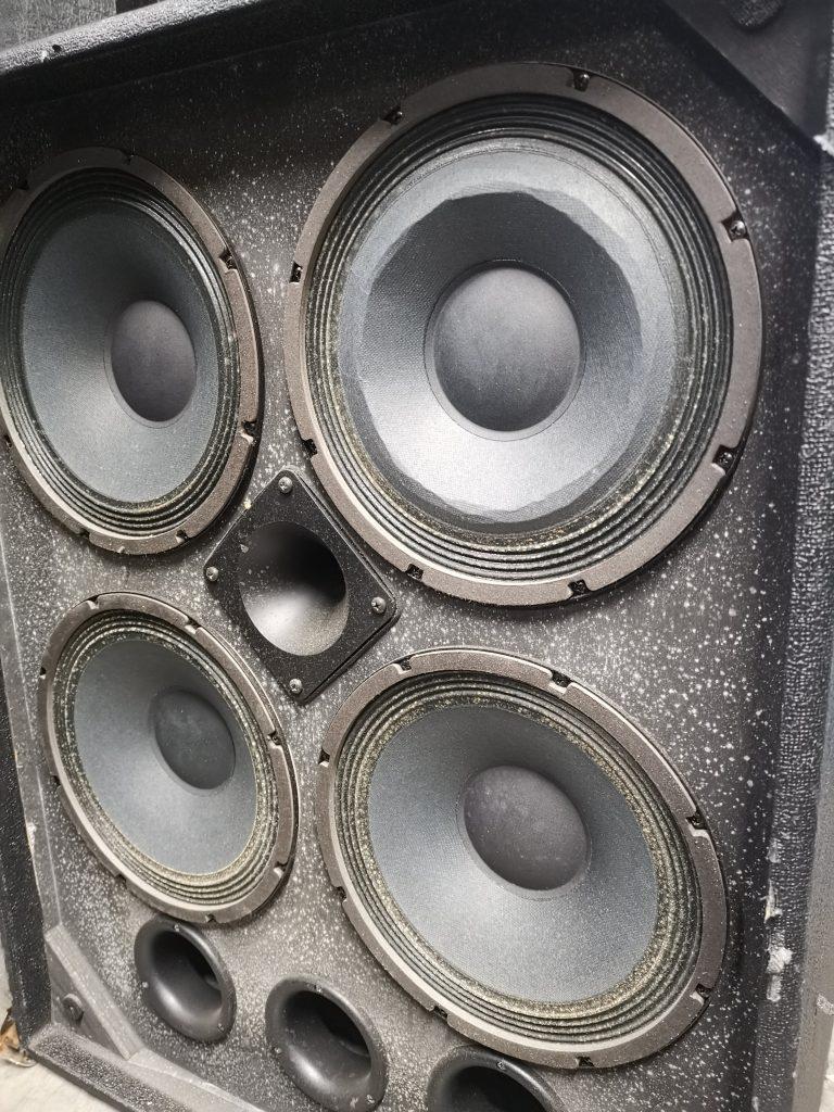 Speaker cabinet cone damage